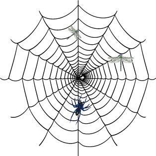 蜘蛛简笔画图片大全可爱
