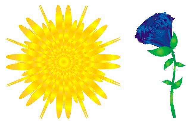 标题 用CorelDRAW绘制一朵美丽的花朵
