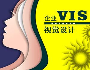 VIS视觉设计视频教程