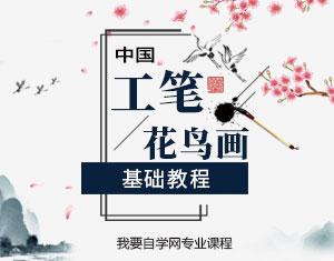 中国工笔花鸟画基础教程