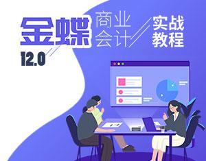 金蝶12.0商业会计实战教程