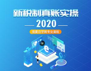 新税制真账实操课程2020