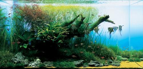 设计素材 3dsmax纹理贴图素材 鱼缸贴图